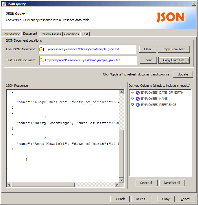 Json doc panel.png
